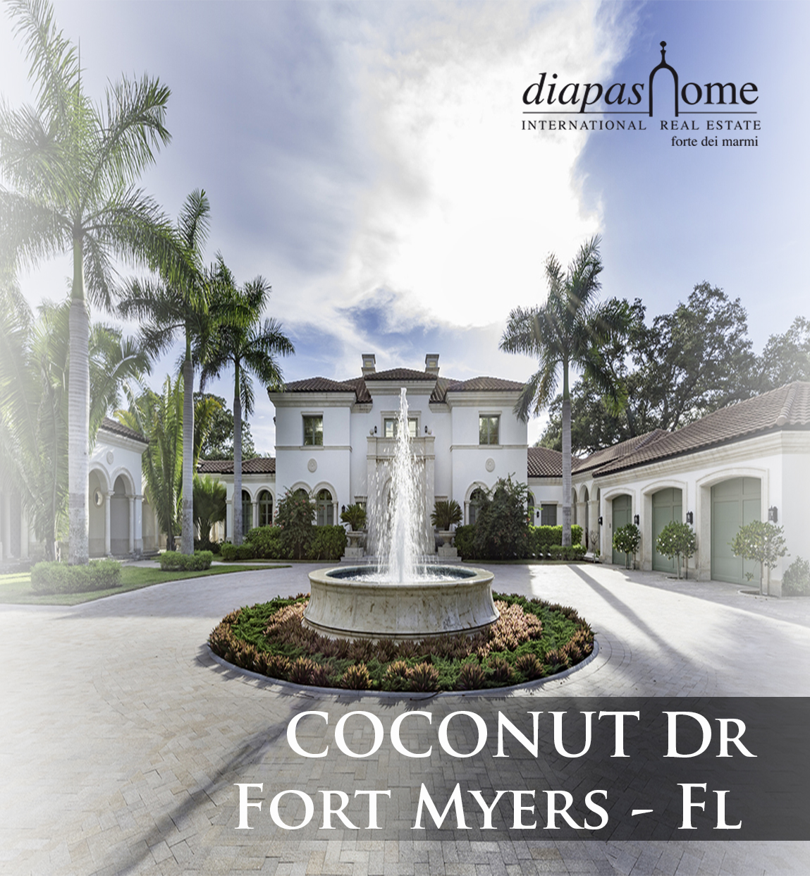 coconut dr